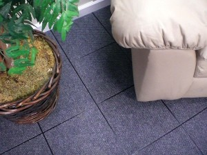 ThermalDry Basement carpet Minnesota