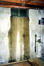 Leaking basement windows